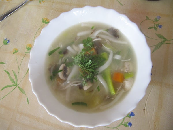 Laotian Chicken and Vegetable Soup
