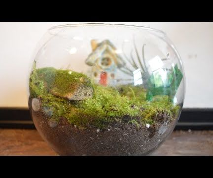 How to Make a Fairy Moss Garden Terrarium