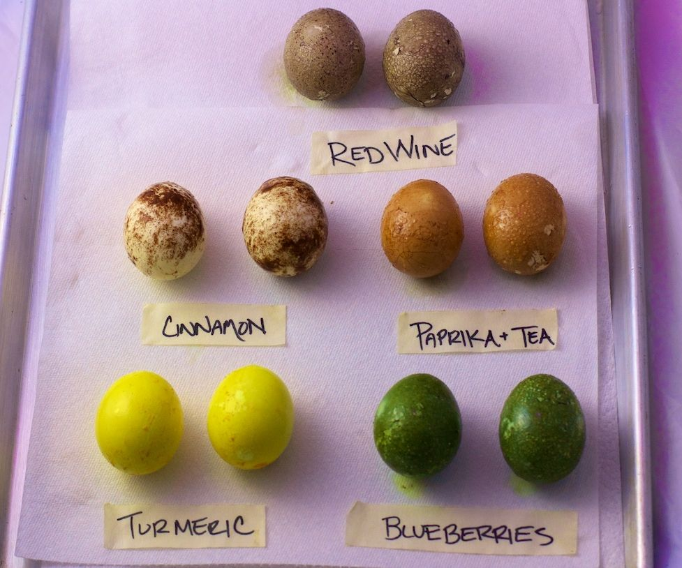 Naturally Dyed and Cooked Easter Eggs in 3 Easy Steps