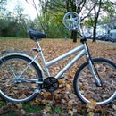 """simple rowing bicycle """"la remarianette"""""""