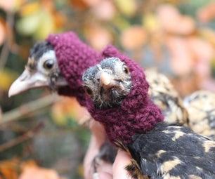 没有足够的鸡穿帽子 - 启动针织很有趣