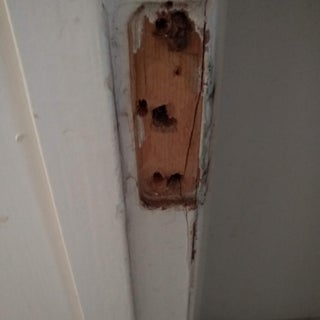 How to Repair Stripped Screw Holes for a Door Hinge.