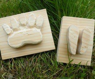 Animal Tracks for Plaster Casting.