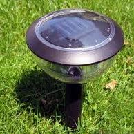 solar-yard-light.jpg