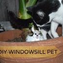 DIY WINDOWSILL PET