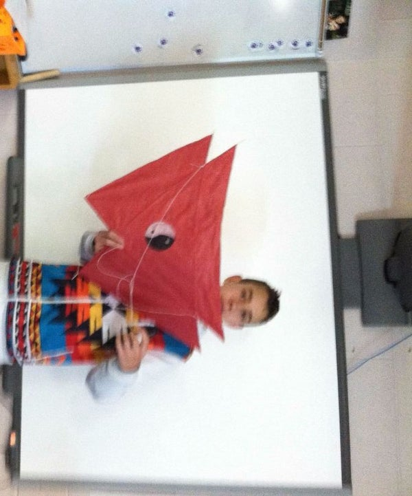 Barn Door Kite by Tim and Wil