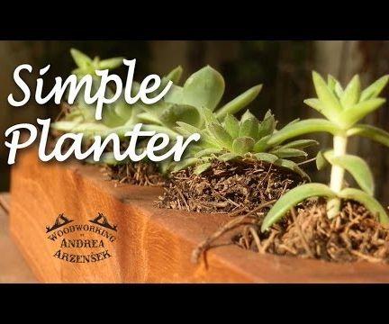 Cedar Succulent Planter