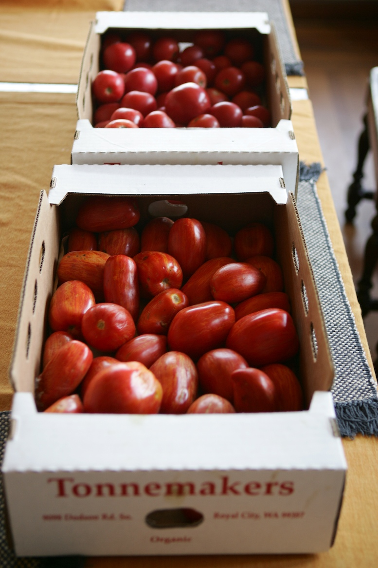 Freezing summer tomato crop