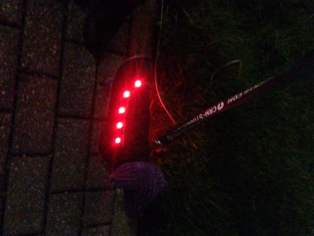 Your Light Up Dog Coat Is Now Ready for Walks!