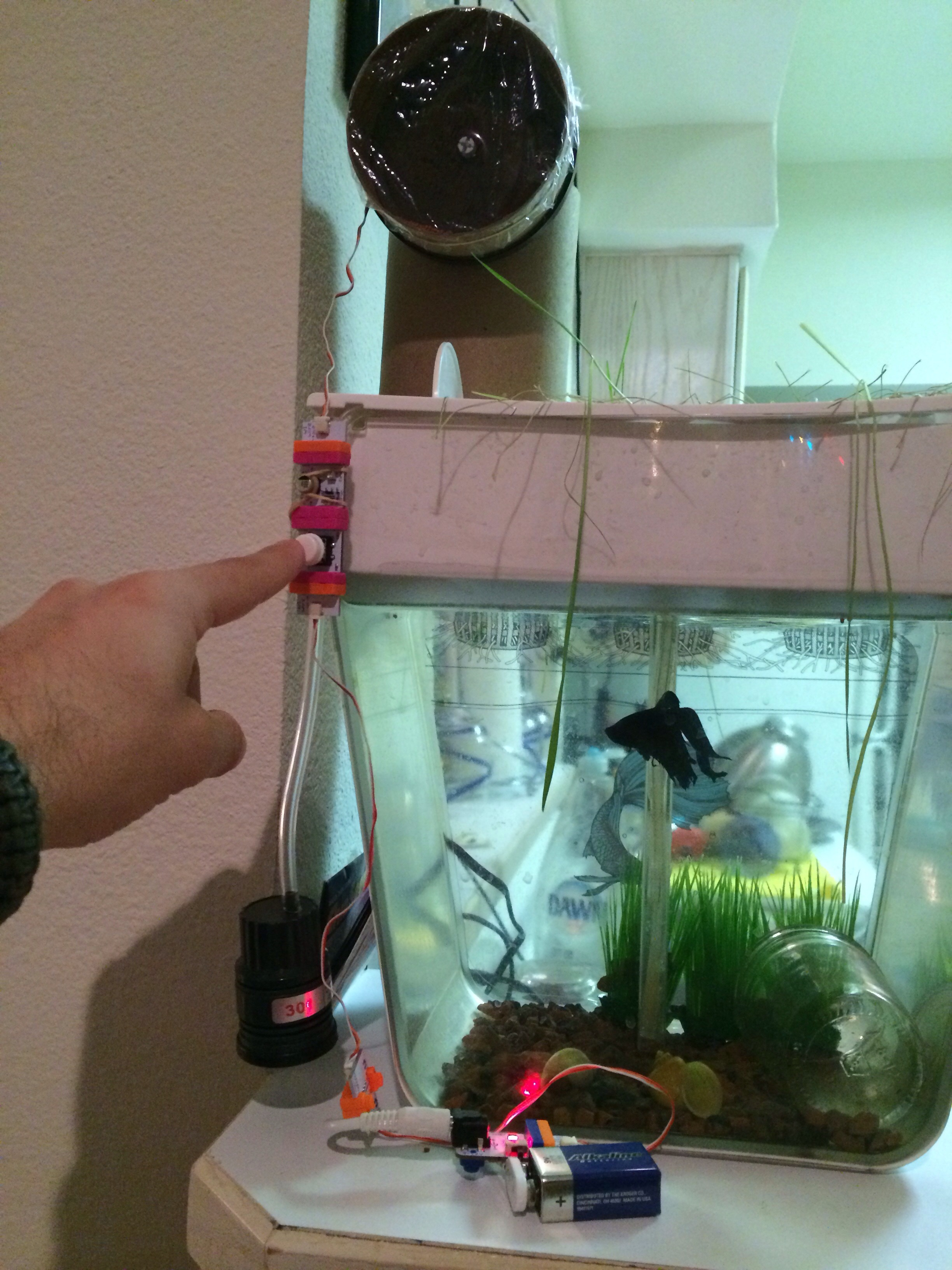 One Button Fish Feeder