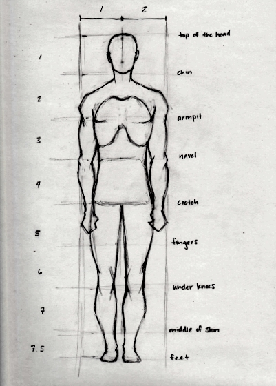 Drawing the Human Head and Figure in Proportion