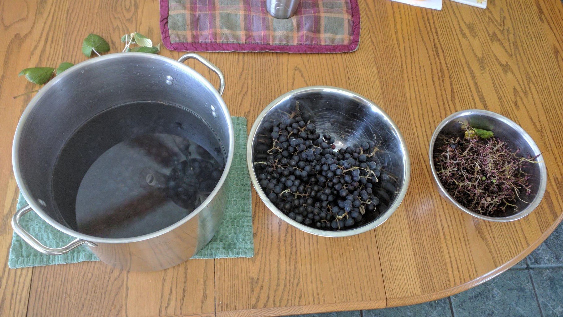 Preparing the Grapes to Extract the Juice