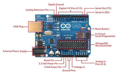 Brains, Sensors, and Servos