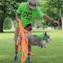 Ring of Fire (Dog Jumps Through Hoop)