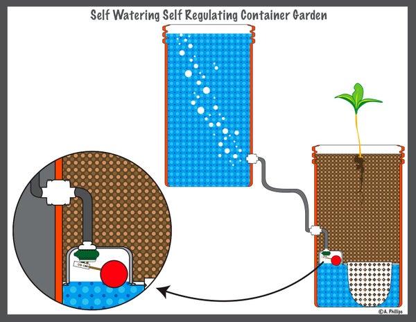 Zero Power, Self-Watering, Self-Regulating Container Garden