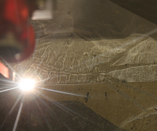 Making a Centipede Fossile.