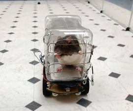 Rat-Operated Vehicle