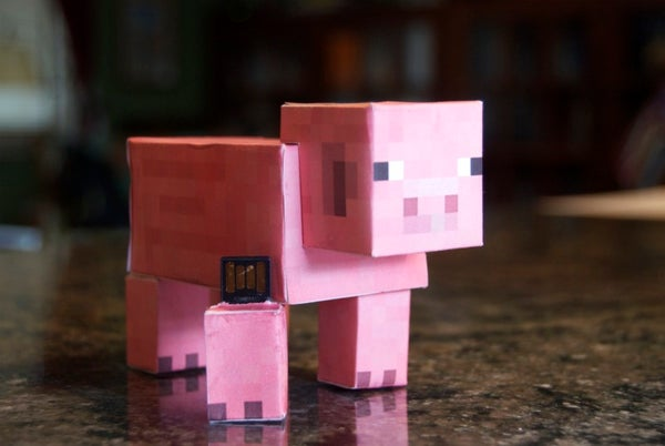 Fill a Minecraft Pig With Minecraft