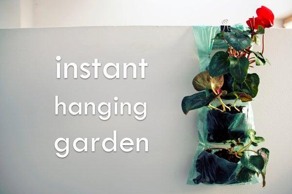 Instant Hanging Garden