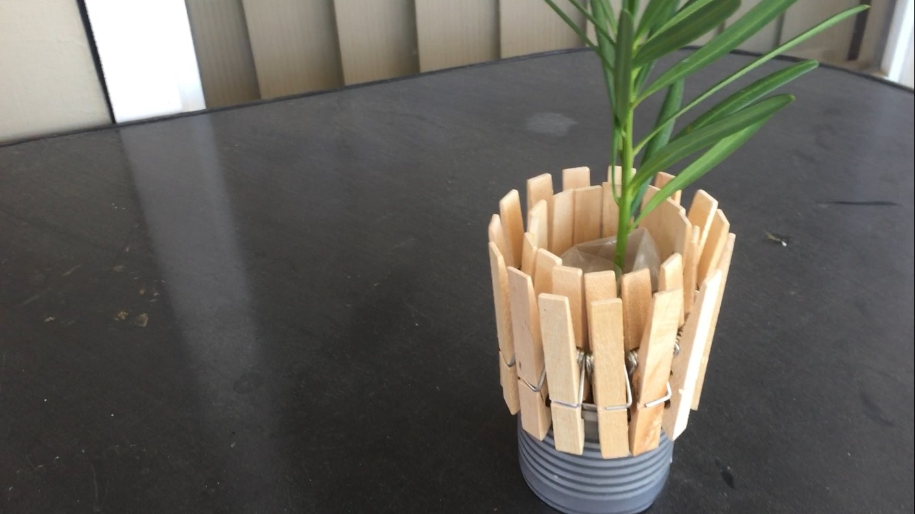 Clothes Pin Pot