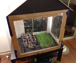 Cardboard Greenhouse