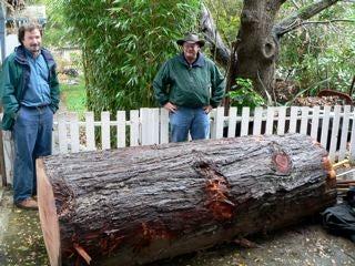 Get a Log