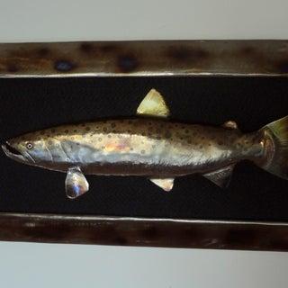 steelhead trout.JPG