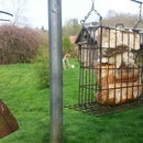 Bird bread feeder