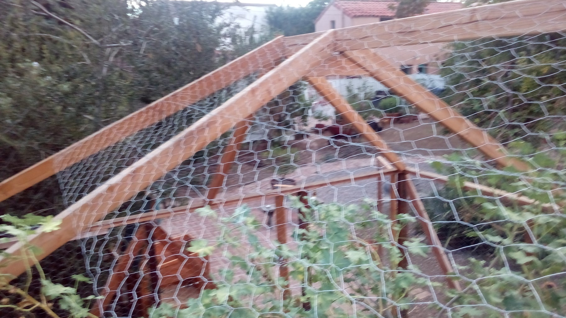 Continue Adding Chicken Wire to the Roof