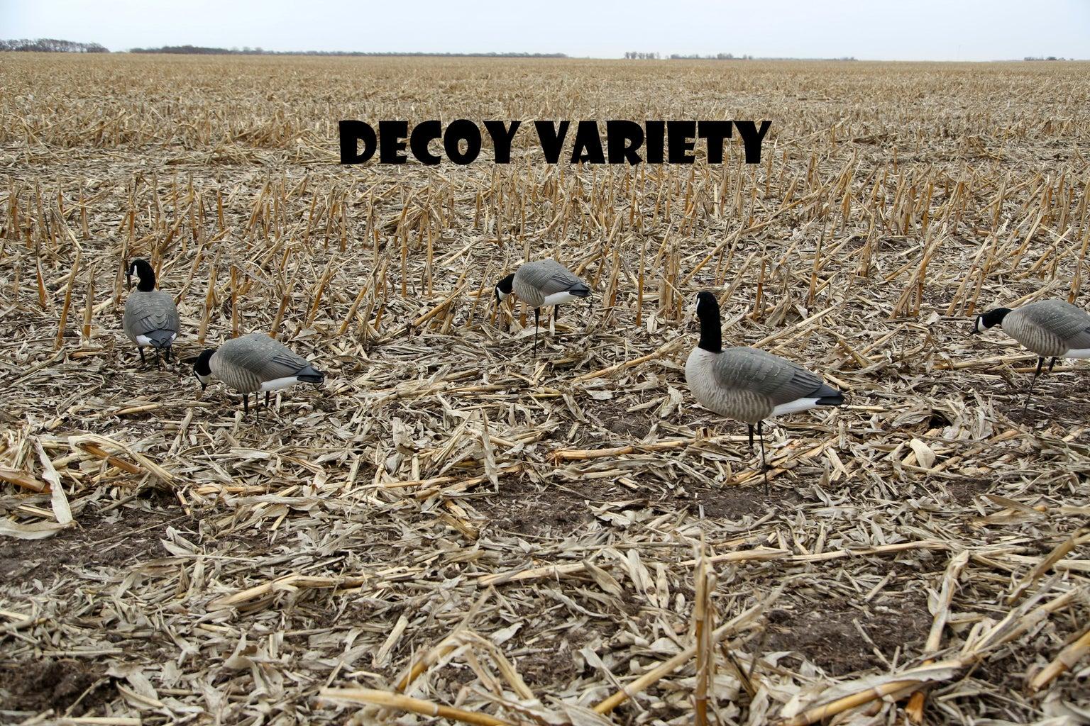 Prepare Your Decoys