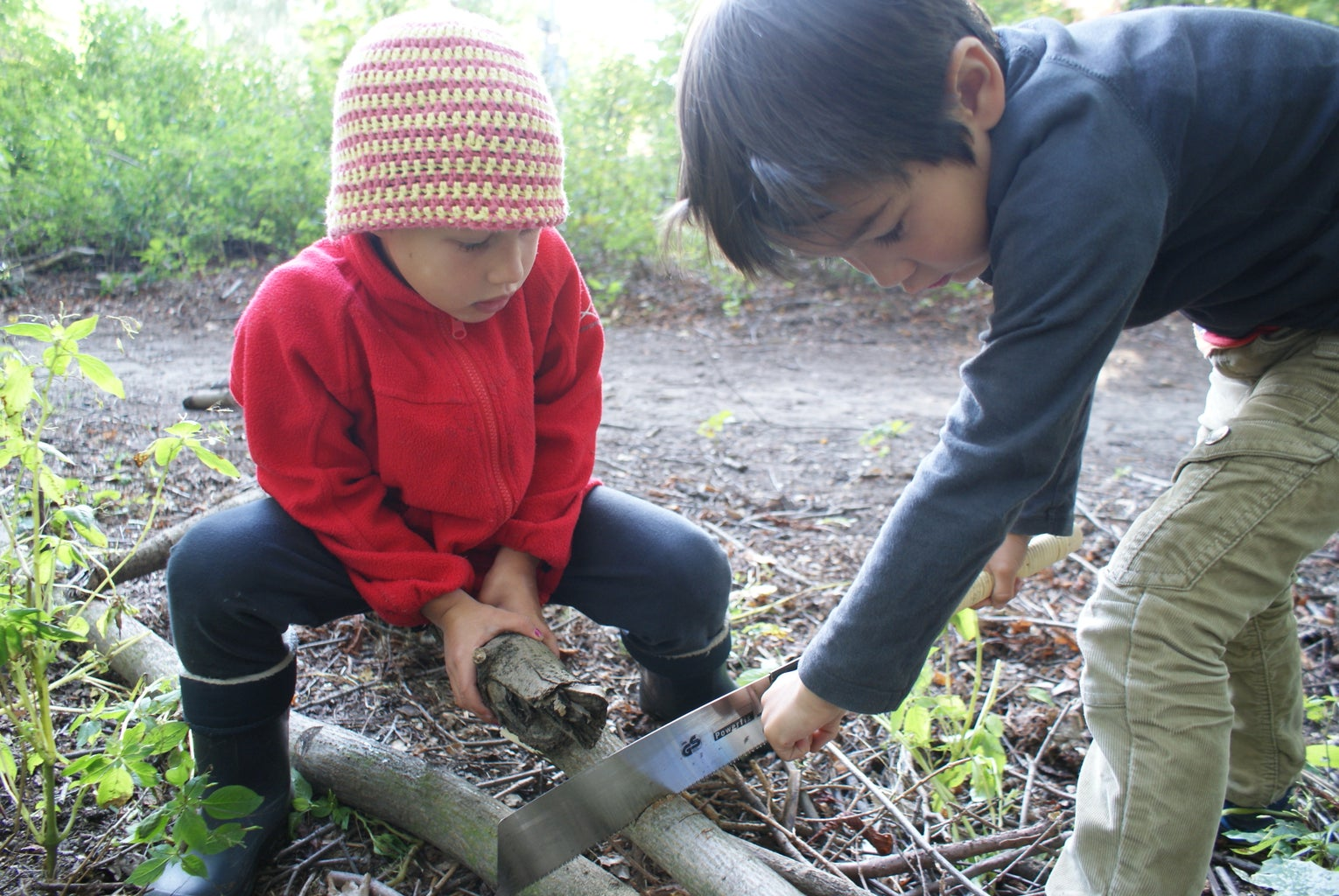 Finding and Cutting the Wood