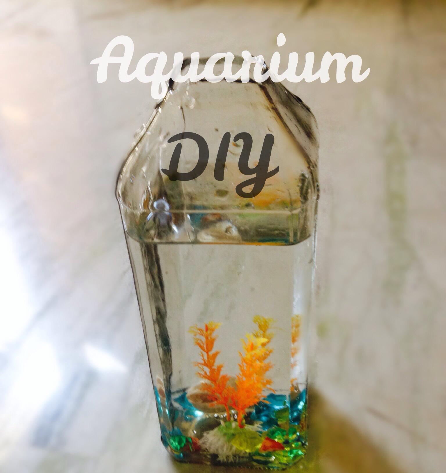 DIY 1 Minute Wine Bottle Aquarium For Plastic Fishes!