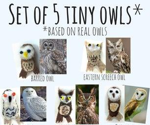 Set of 5 Tiny Owls (Based on Real Owls!)