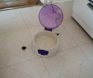 Distinguishing Pet Bowl