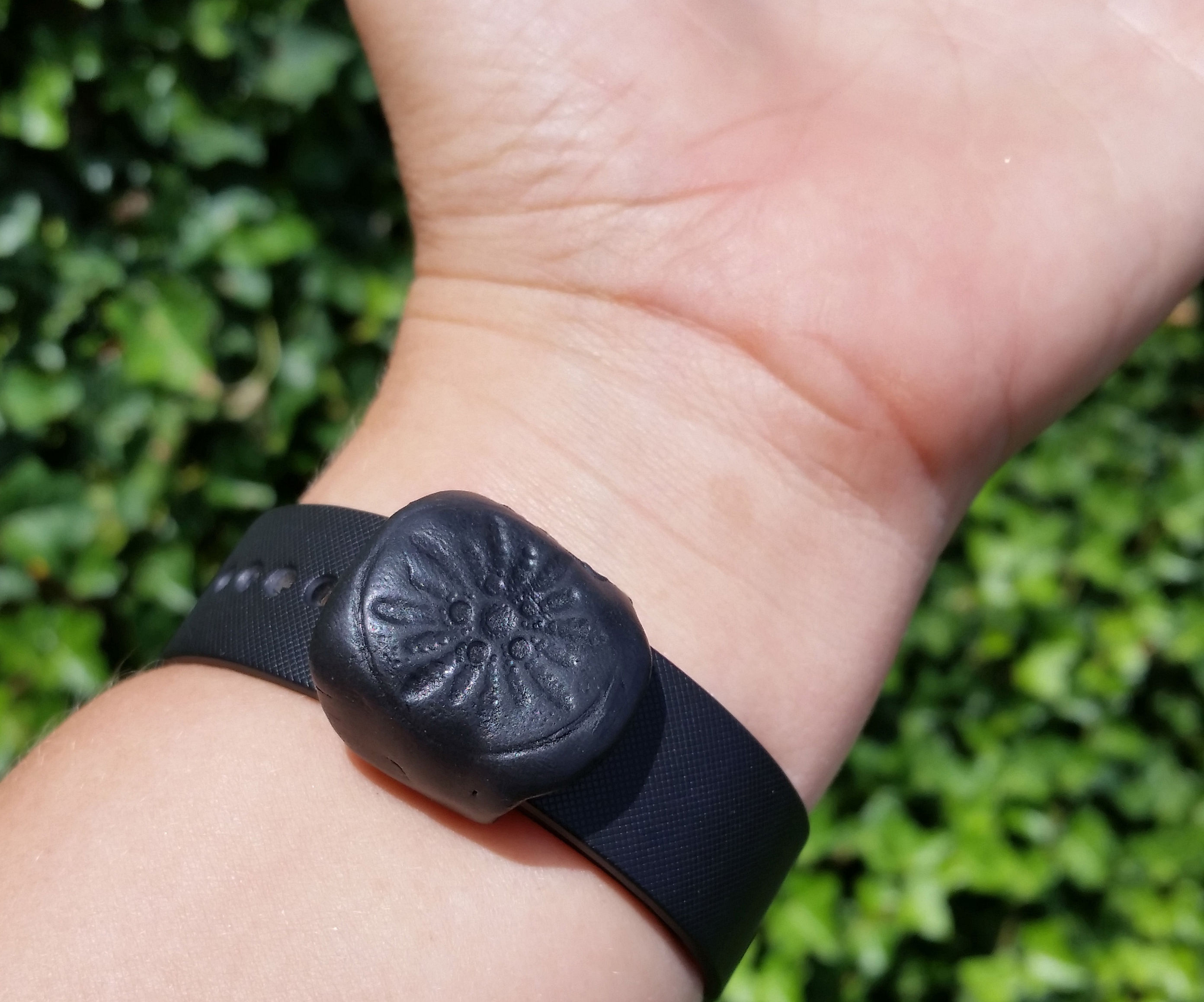 Smartwatch Security Band