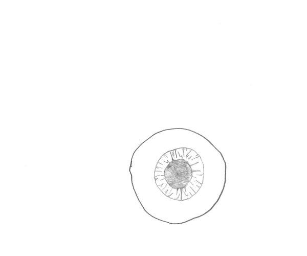 Drawing the Eyeball Basics