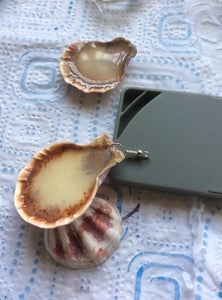 Make an Eye on the Shell