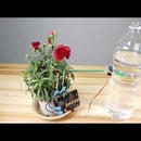 A Simple Automatic Watering System_microbit