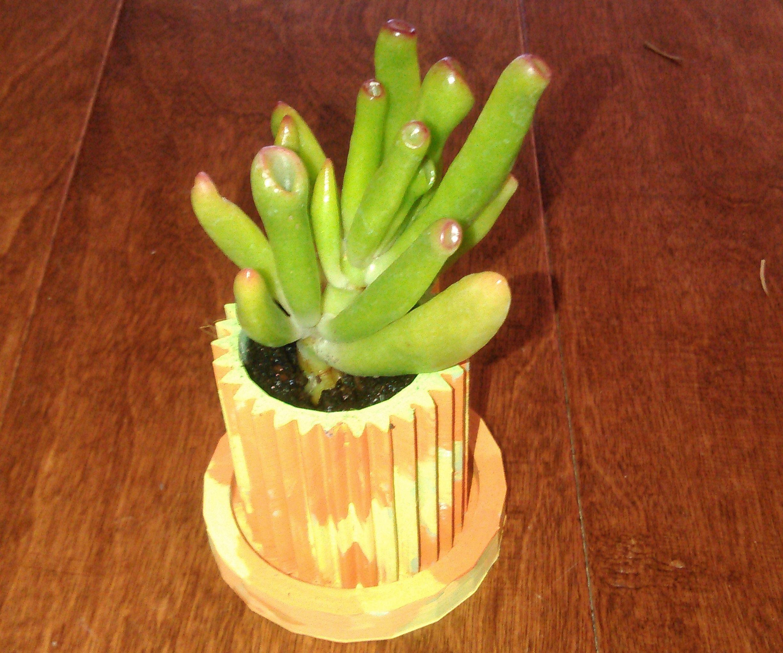 3D Printed Succulent Pot & Coaster