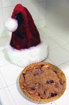 Holiday Apple & Cranberry Crumble topped Pie