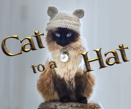 Cat to a Hat