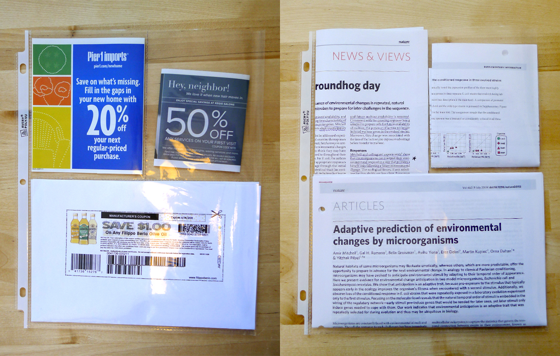 Divide Your Page Protectors