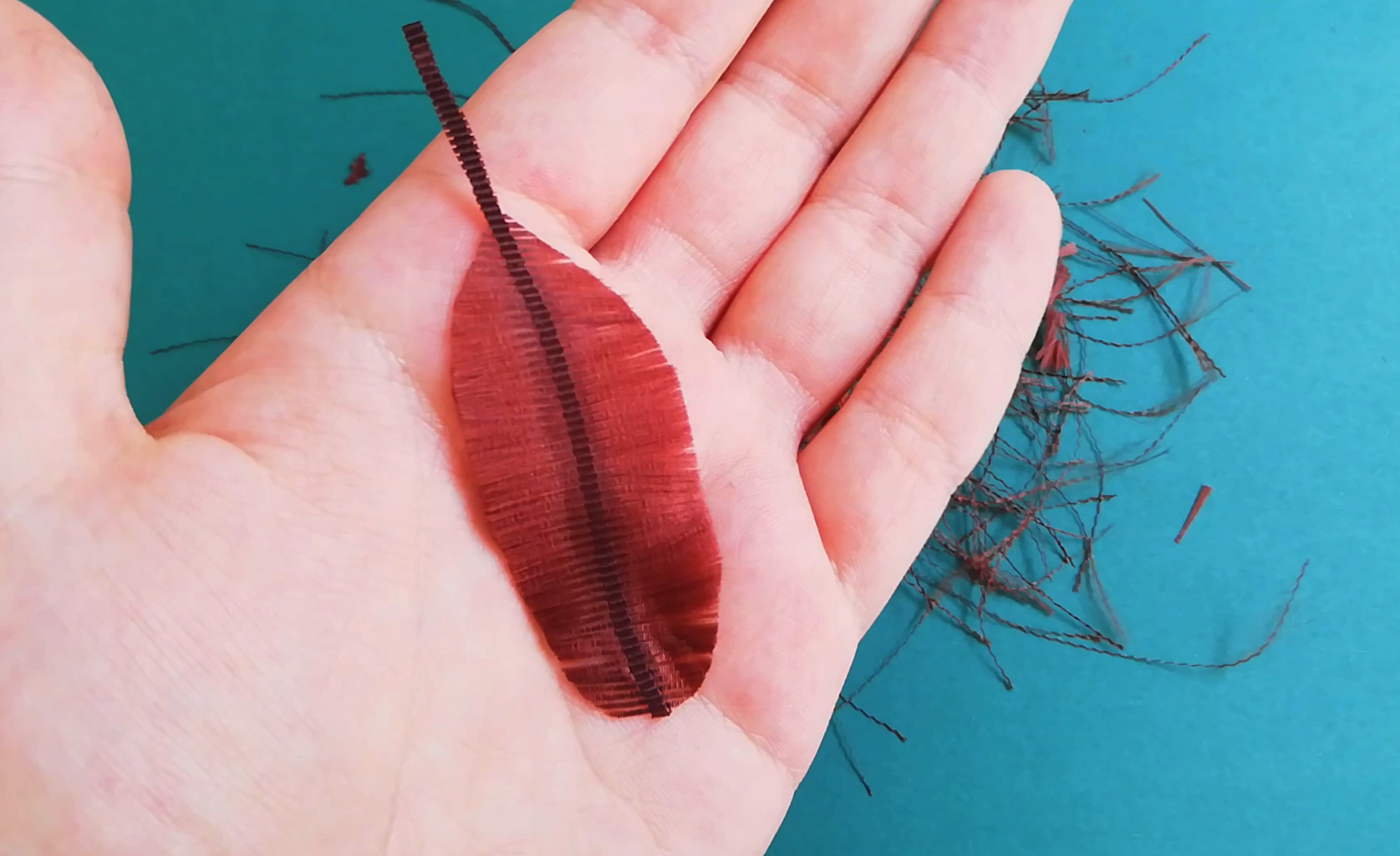 Shaping the Feather