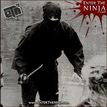 The Art of Becoming a Ninja