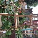 Pallet Garden Trellis