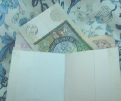 Make a Wallet From Used Skimmed Milk Cartons.
