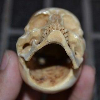 skull-handle-inside.jpg