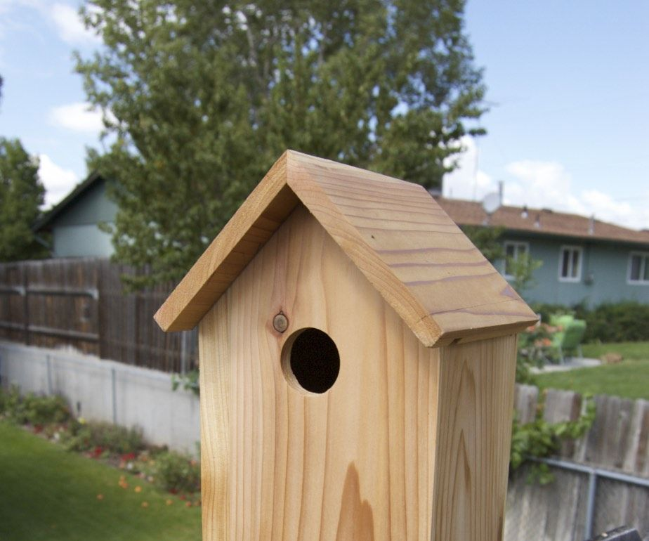 Cedar Blue-Bird Birdhouse