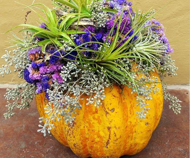 3 Unique Ways to Decorate Pumpkins Using Natural Ingredients