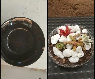Broken Bowl to Catcus Plant Holder